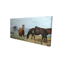 Canvas 24 x 48 - 3D - Horses eating in the meadow