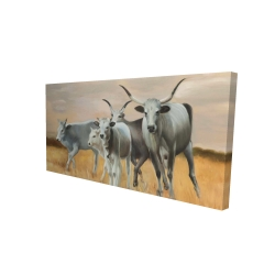 Canvas 24 x 48 - 3D - Nguni breeding