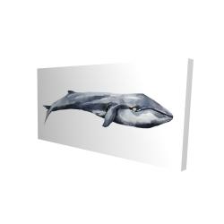 Canvas 24 x 48 - 3D - Watercolor whale