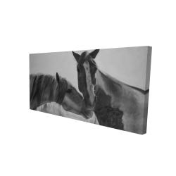 Canvas 24 x 48 - 3D - Horses lover