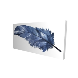 Canvas 24 x 48 - 3D - Blue feather