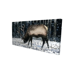 Canvas 24 x 48 - 3D - Caribou in the winter forest