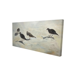 Canvas 24 x 48 - 3D - Sandpiper birds