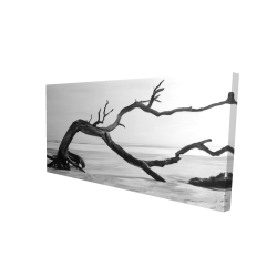 Canvas 24 x 48 - 3D - Dead tree in the middle of water