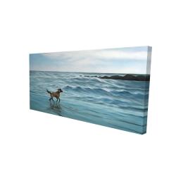 Canvas 24 x 48 - 3D - Dog on the beach