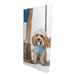 Canvas 24 x 48 - 3D - Fashionable cavoodle dog