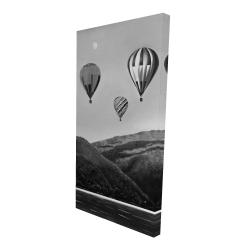 Canvas 24 x 48 - 3D - Air balloon landscape