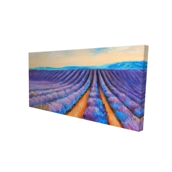 Canvas 24 x 48 - 3D - Lavender fields