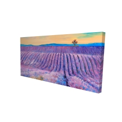 Canvas 24 x 48 - 3D - Landscape of a field of lavender