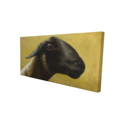 Canvas 24 x 48 - 3D - Young ram