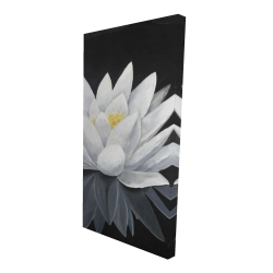 Canvas 24 x 48 - 3D - Lotus flower with reflection