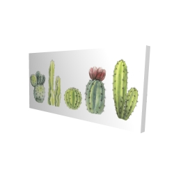 Canvas 24 x 48 - 3D - Tiny cactus set