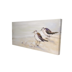 Canvas 24 x 48 - 3D - Two sandpipers on the beach