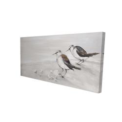 Canvas 24 x 48 - 3D - Two sandpipiers birds