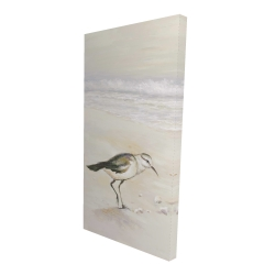 Canvas 24 x 48 - 3D - Semipalmated sandpiper on the beach