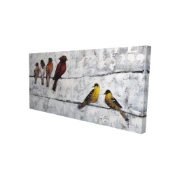Canvas 24 x 48 - 3D - Colorful birds on branches