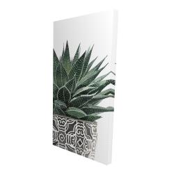 Canvas 24 x 48 - 3D - Zebra plant succulent