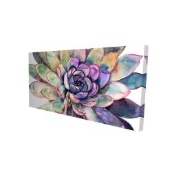 Canvas 24 x 48 - 3D - Multicolored succulent