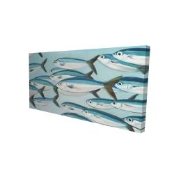 Canvas 24 x 48 - 3D - Small fish of caesio caerulaurea