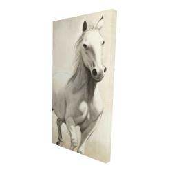 Canvas 24 x 48 - 3D - Gallant white horse