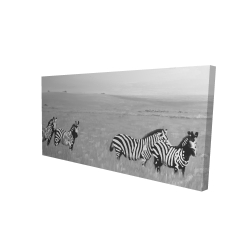 Canvas 24 x 48 - 3D - Zebras in the savannah