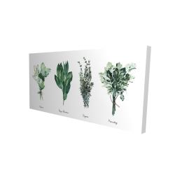 Canvas 24 x 48 - 3D - Fine herbs
