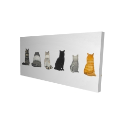 Canvas 24 x 48 - 3D - Six cats lined up back view