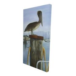 Canvas 24 x 48 - 3D - Pelican