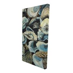 Canvas 24 x 48 - 3D - Oyster shells