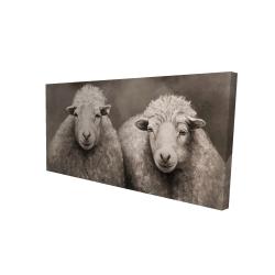 Canvas 24 x 48 - 3D - Sheep sepia