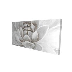Canvas 24 x 48 - 3D - Delicate white chrysanthemum