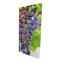 Canvas 24 x 48 - 3D - Bunch of grapes