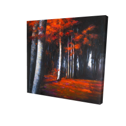 Canvas 24 x 24 - 3D - Mysterious forest