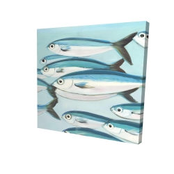 Canvas 24 x 24 - 3D - Small fish of caesio caerulaurea