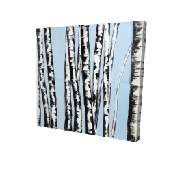 Canvas 24 x 24 - 3D - Pastel birches
