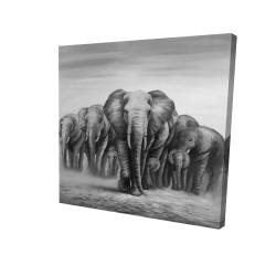 Toile 24 x 24 - 3D - Troupeau d'éléphants