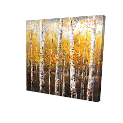 Canvas 24 x 24 - 3D - Birches by sunny day