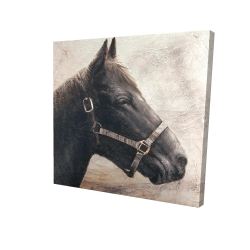Canvas 24 x 24 - 3D - Gallopin the brown horse