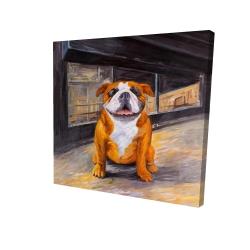 Canvas 24 x 24 - 3D - Smiling bulldog