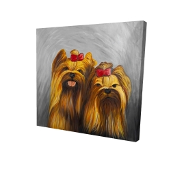Canvas 24 x 24 - 3D - Two dogs with bow tie on gray background