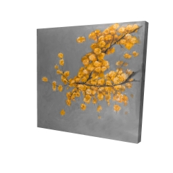 Canvas 24 x 24 - 3D - Golden wattle plant with pugg ball flowers