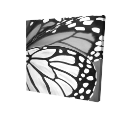 Canvas 24 x 24 - 3D - Butterfly wings closeup