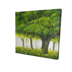 Canvas 24 x 24 - 3D - Forest by summer