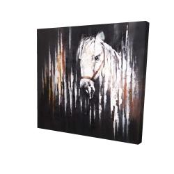 Canvas 24 x 24 - 3D - White horse in the dark