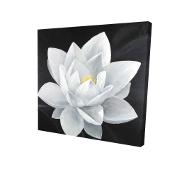 Canvas 24 x 24 - 3D - Overhead view of a lotus flower