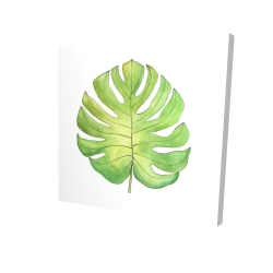 Canvas 24 x 24 - 3D - Tropical leaf