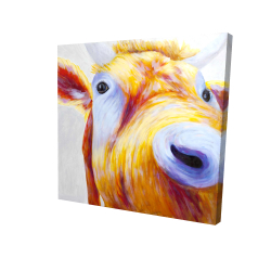 Canvas 24 x 24 - 3D - Closeup of a colorful country cow