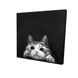 Canvas 24 x 24 - 3D - Curious cat