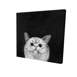 Canvas 24 x 24 - 3D - Watching cat
