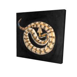 Canvas 36 x 36 - 3D - Southern timber rattlesnake